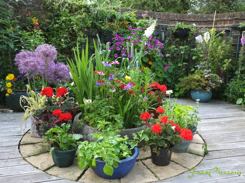 patio-flower-display.jpg