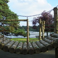 view-of-the-lake-through-climbing-frame