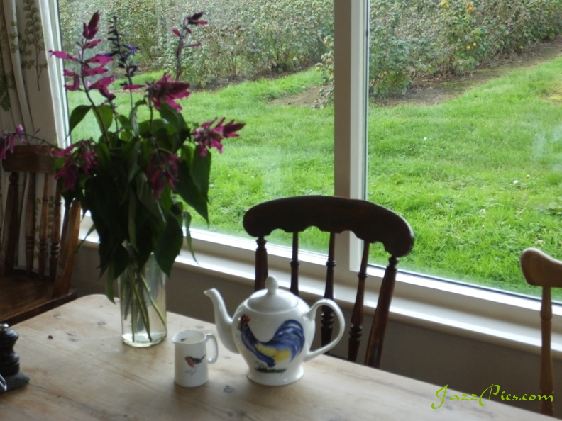 tea-pot-and-milk-jug.jpg