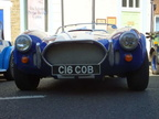 cobra-at-petersfield-show