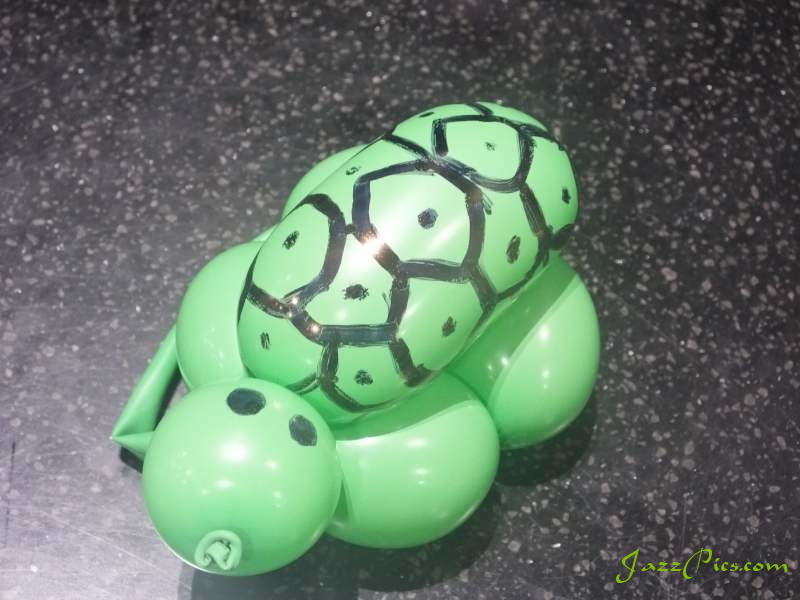 turtle-balloon-top